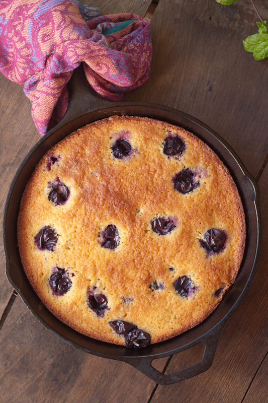 concord.grape.cornmeal.cake-0218