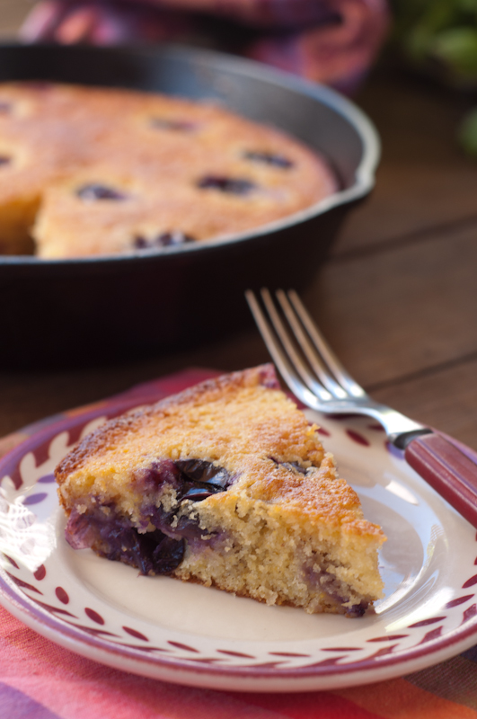 concord.grape.cornmeal.cake-0418