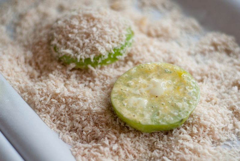 fried green tomatoes -0425-2