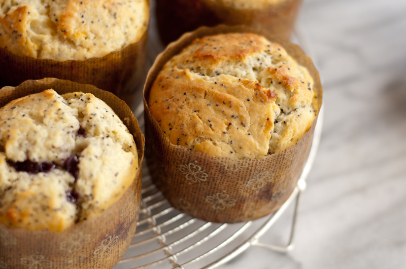 lemon.poppyseed.muffins-0101